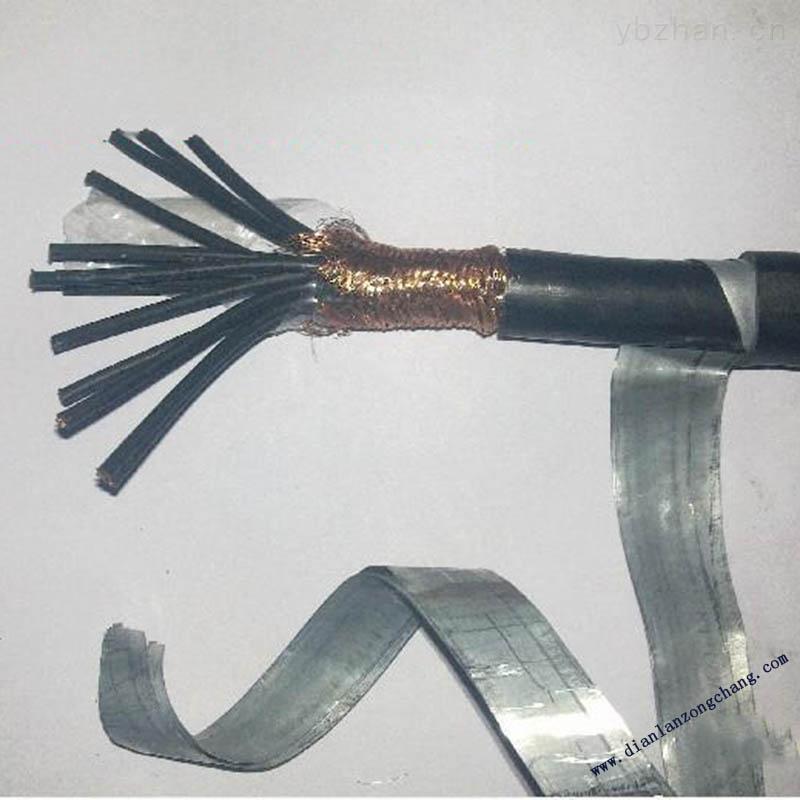 PTY23钢带铠装电缆-PTY234*1.0价格