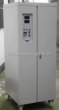 DL19-WYZ-直流可控硅整流器