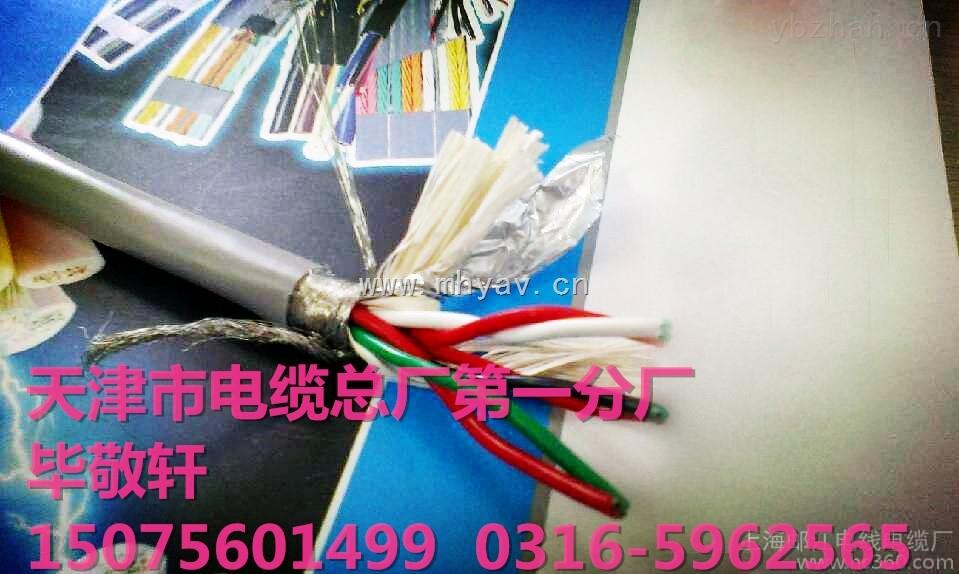ASTP-120电缆,铠装485通迅电缆