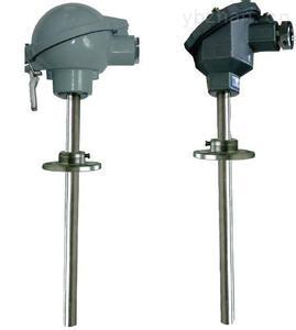 WZPK2-136PT100双支铠装热电阻