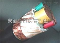 BPYJVP3*6+3*1.0变频电缆