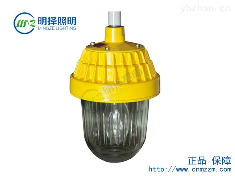 TFE9720防爆平台灯