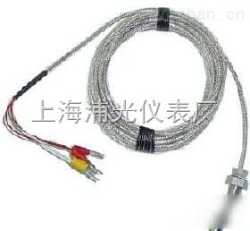 WZPM(引进铂电阻元件)表面铂电阻