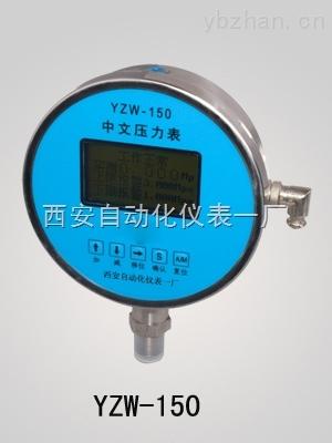 YZW-150中文压力表