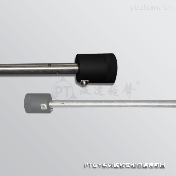 PTWY系列计量标定专用挭携式磁致伸缩液位传感器