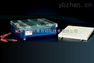DL19- DYCP-37B-等电聚焦多用途电泳仪
