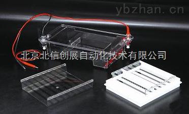 DL19- DYCP-31E-瓊脂糖水平電泳儀