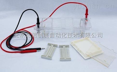 DL19- DYCP-31CN-瓊脂糖水平電泳儀