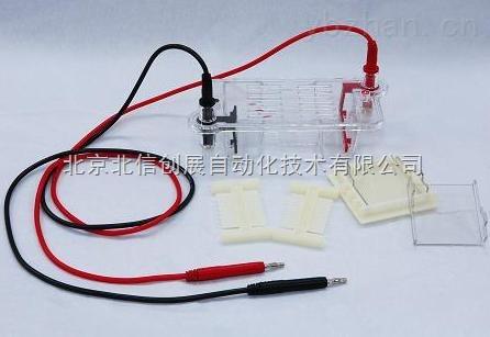 DL19- DYCP-31BN-迷你琼脂糖电泳仪