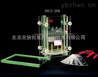 DL19- DYCZ-28B-单板夹芯式垂直电泳仪