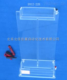 DL19- DYCZ-22B-大號單垂直電泳儀