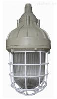 CCd93防爆照明灯 IIC DIP