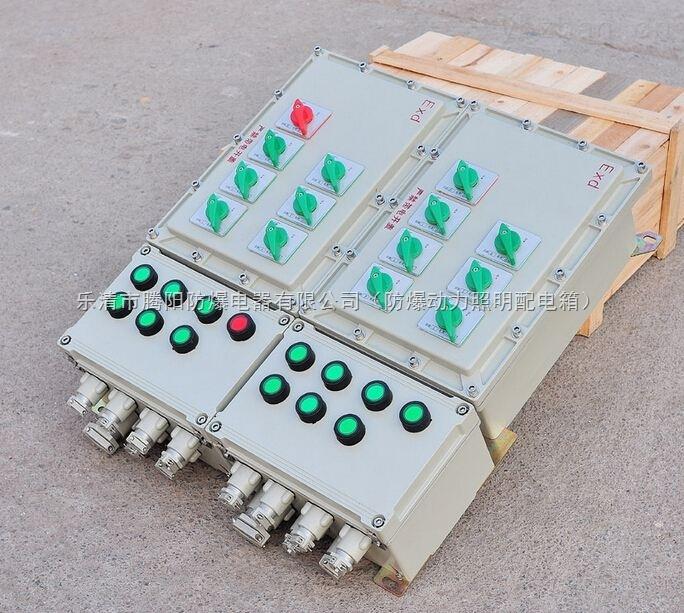 防爆照明動力配電箱BXM(D)
