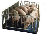 称猪地磅,畜牧养殖厂用电子地磅