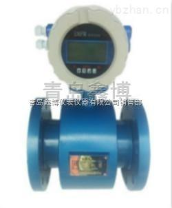 DN50山東青島工業污水電磁流量計