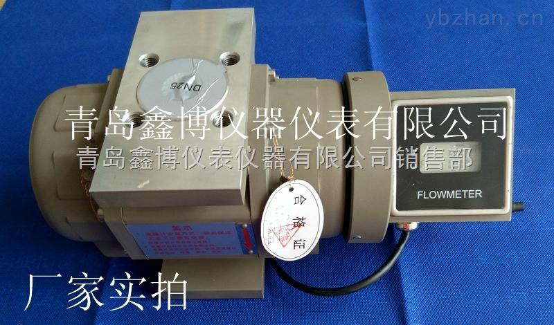 天然气流量计技术性能XBOLLQ