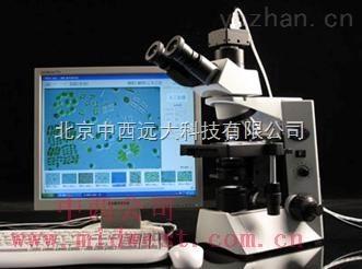 ZHX/SS-200-藻類智能鑒定計數儀