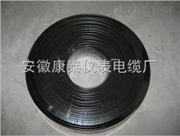 8BTV2-CT型自限温伴热电缆