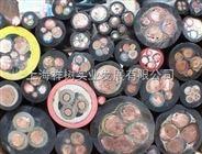 上海祥树国际贸易优势供应RKWT/LED P4-225/5.OM LUMBERG    电缆