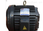 ALITE油泵ALITE HYDIAULIC CO.,LTD電機 ALITE油壓電機