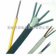 氟塑料绝缘氟塑护套计算机电缆