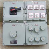 BXSBXS防爆检修电源插座箱IIB