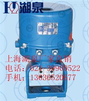 DDZZ.381LSA.20A电动执行器
