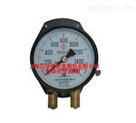 YZS-102雙針壓力表