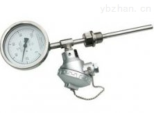 WSSP-401热电偶双金属温度计