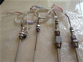 WZPK2-466SA双支铠装热电阻