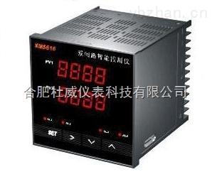XMS61X系列双回路智能数显控制仪