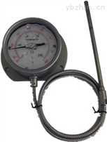 WTY-280 电站用压力式温度计