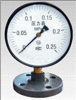 TYTP-100S衬四氟隔膜压力表