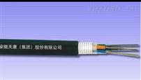 GYTS层绞式光缆
