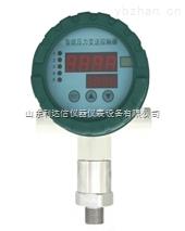 LDX-CCY-CYG-103-智能數字壓力控制器