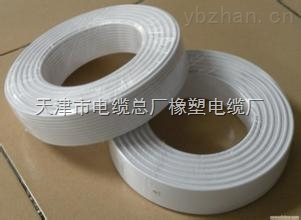 铜芯电源线 ZR-RVVB 2*1.5mm2