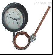 电阻式温度计
