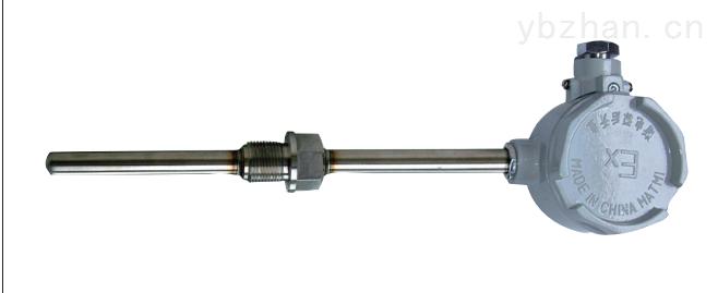 WZPK-241-安徽天康防爆铂热电阻