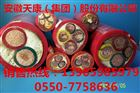 YGCP安徽天康硅橡胶电缆