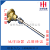厂家专业生产泰州双华仪表低温喷涂耐磨电热偶 WRNM-230