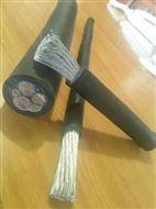 DNF电缆DNF风电电缆-DNF风能发电电缆