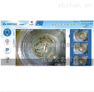 TPCB-II-C 7.0虫情监测系统完美体现了植保信息化