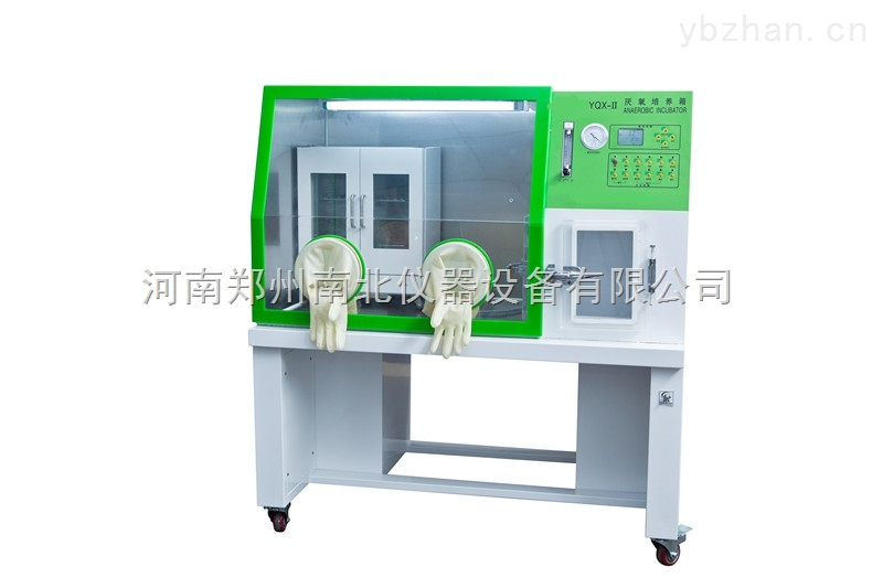 YQX-Ⅱ高精度数显厭氧培養箱报价