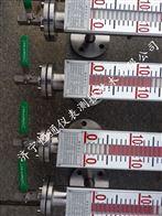 UHZ-1000/20F4PSE磁翻板液位计 物位计