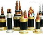 供应NH-VV22 耐火铠装电力电电缆