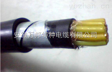 NH-BVV22铠装耐火电缆