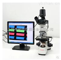 SK2208L光学材料无限远数码三目金相显微镜带偏光功能粉末测量