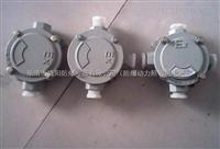 CFXJ-户外B3通防水防尘防腐接线盒