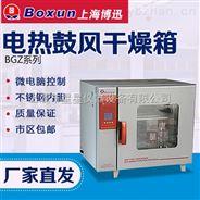 上海博迅 BGZ系列电热鼓风干燥箱