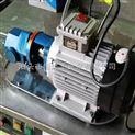 廠家直銷WCB微型輸油泵,齒輪油泵 ,WCB手提式齒輪泵